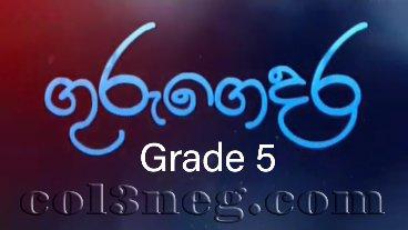 Guru Gedara - Grade 5