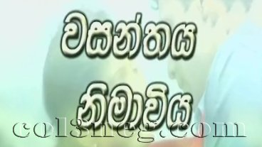 Wasanthaya Nimaviya